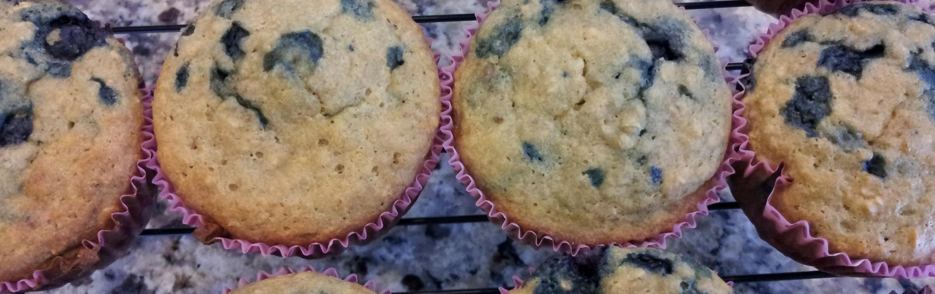 Blueberry & Vanilla Protein Muffins